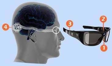 1. Vanjska strane naočala - digitalna kamera 2. Unutar naočala - senzor pokreta očiju će usmjeravati kameru 3. Sa strane naočala - digitalni procesor i bežični odašiljač 4. Implantat u mozgu - mali implantat ispod lubanje će primati bežićne signale i izravno stimulirati vizualni korteks u mozgu