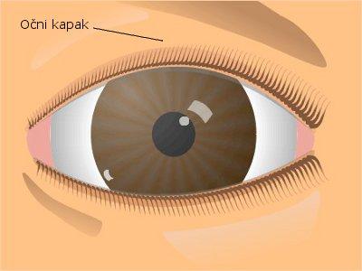 očni kapak