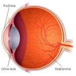 Prezentacija: Pogled u unutrašnjost oka