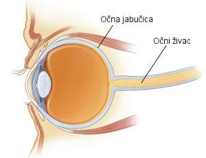 OCT, Očna hipertenzija, Očni živac, O.D., Orbita, O.S.